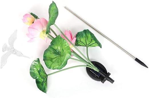 Riuty Luz Solar LED, Resistencia a Altas temperaturas Lámpara de jardín LED para Exteriores de Colores para jardín Área de Piscina de Entrada de Patio(Colibrí): Amazon.es: Jardín