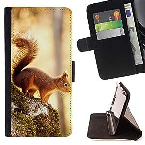 KingStore / Leather Etui en cuir / HTC One M9 / Enfriar Ardilla