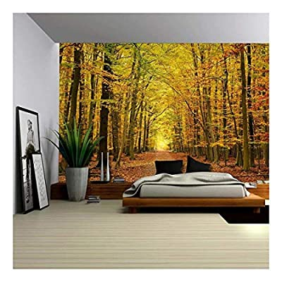 Wall26 - A Pathway in an Autmun Forest - Wall Mural, Removable Sticker, Home Decor - 100x144 inches