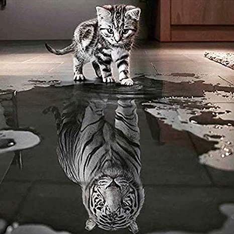 Tiger Crystal Rhinestone Embroidery Pictures Arts Craft Gift Included for Home Wall Decor nuoshen DIY 5D Diamond Painting Full Kits