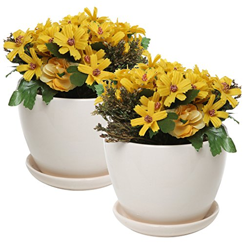 MyGift 4 Inch Ceramic Succulent Planter Flower Pots with Saucer, Set of 2, ()