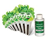 AeroGarden Salad Greens Mix Seed Pod Kit (7-Pod)