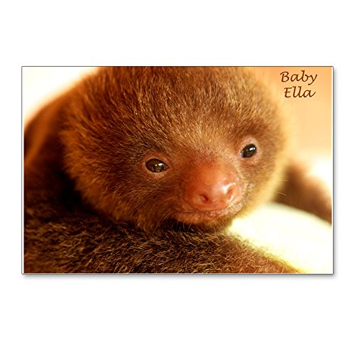 CafePress - Baby Ella The Sloth On Baby Blanket, Yellow Postca - Postcards (Package of 8), 6