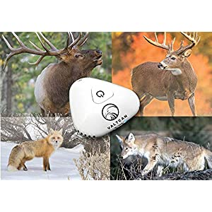 Valtcan ScentDetox Portable Ozone Generator Scent and Odor Crusher for Deer Hunting Accessories Mobile Lithium Battery Powered Eliminators System O3 Oxygen Quick Rechargable Outputs 8mg/h