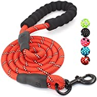 Sonas Brands 5 FT Strong Dog Leash with Comfortable Padded Handle and Highly Reflective Threads for Medium and Large Dogs (Red)