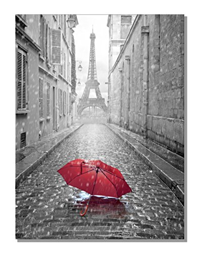 789Art - Black And White Romantic Paris Street Contemporary Wall Art Eiffel Tower Red Umbrella Framed Artwork Decorations For Living Room Office Bedroom Decor(32