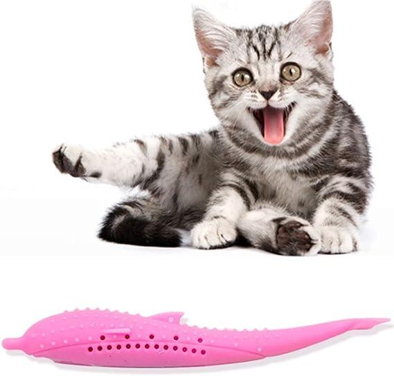 PJDDP Cepillo De Dientes para Gatos, Cepillo De Dientes con Forma De Pez Gato con Hierba Gatera, Juguete De Limpieza De Dientes para Palillos Molares De Silicona Ecológico para Mascotas,Blanco: Amazon.es: Deportes
