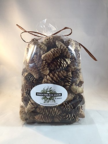 White Spruce Pine Cones 8oz Bag Fall Winter Holiday Home Decor Vase Bowl Filler Displays Crafts