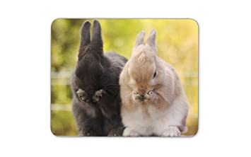 Digiclan Two Rabbit Giggling Mousepad