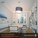 SYLVANIA LED A19 Light Bulb, 60W