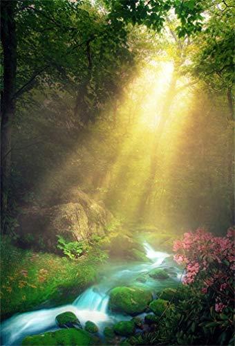 (Leyiyi 8x10ft Spring Mountain Morning Backdrop Greenery Woodland Stream Water Summer Flower Blossom Sunlight Rock Adventure Hiking Photography Background Study Decor Photo Studio Prop Vinyl Wallpaper)