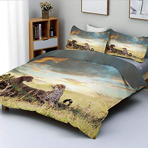 Duplex Print Duvet Cover Set Full Size,Two Cheetahs Africa Nature Grass Dangerous Animals Hunters Rainy Weather PictureDecorative 3 Piece Bedding Set with 2 Pillow Sham,Best Gift for Kids & Adult ()
