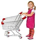 "Emmzoe ""The Little Shopper"" Real Life Kids Mini Retail Grocery Shopping Cart Toy (Chrome Frame)"