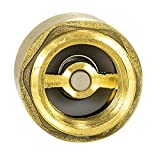 EZ-FLO 20401LF Brass In-Line Check Valve