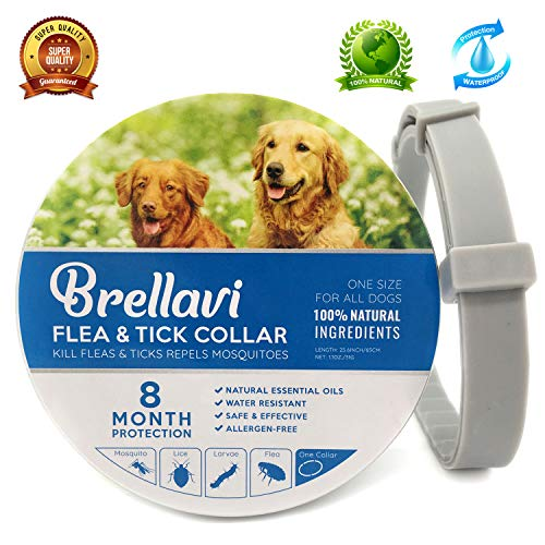 Brellavi Flea Tick Collar Prevention Control for Dogs and Cats - Natural Herbal Non-Toxic Adjustable Best Flеa Collar- Waterproof Flea Tick Prevention Collar Repels Flеas Tiсks Mosquitoes