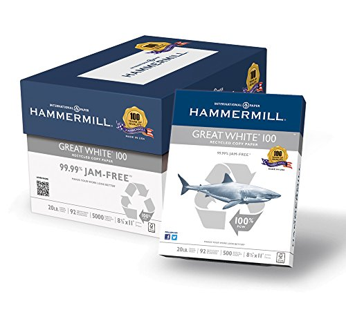 Hammermill Paper, Great White 100% Recycled Printer Paper, 8.5 x 11 Paper, Letter Size, 20lb Paper, 92 Bright, 10 Reams / 5,000 Sheets (086790C) Acid Free Paper by Hammermill