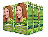Naturtint Permanent Hair Color - 8C Copper Blonde, 5.28 fl oz (6-pack)