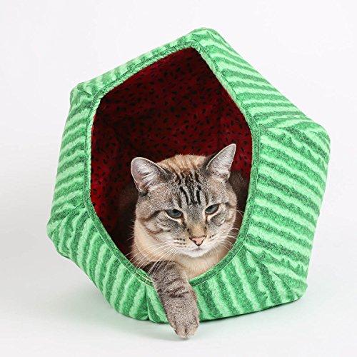 Watermelon Cat Ball Cat Bed Price Reviews User Ratings