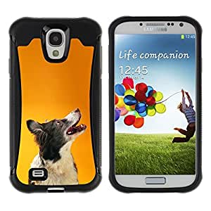 LASTONE PHONE CASE / Suave Silicona Caso Carcasa de Caucho Funda para Samsung Galaxy S4 I9500 / Border Collie Orange Smart Dog Canine