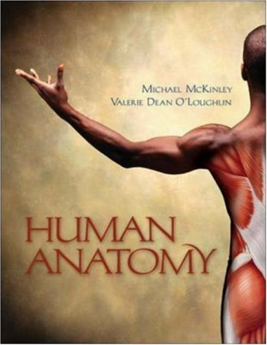 By Michael Mckinley Valerie Oloughlin Human Anatomy First 1st