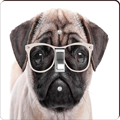 Rikki Knight RK-LSPS-44278 Hipster Pug Dog Puppy with Glasses Design Light Switch Plate Cover