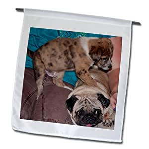 Jos Fauxtographee Realistic - Two Cute pets dogs, one a puppy playing together on a lap - 18 x 27 inch Garden Flag (fl_64169_2)
