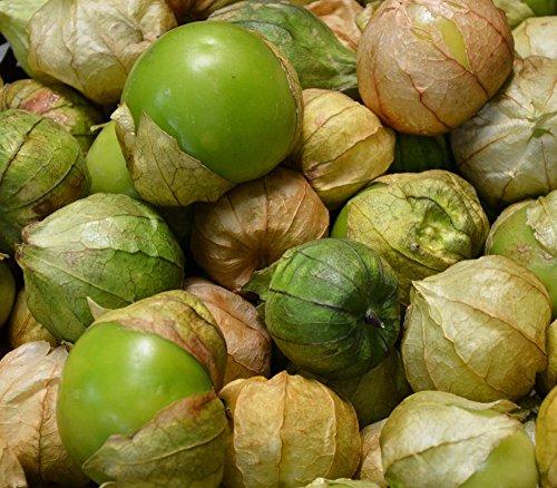 Grande Rio Verde Tomatillo (50 seeds) Proven Ethnic Giant! by zellajake (Image #1)
