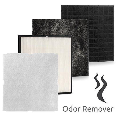 Smoke odor remover