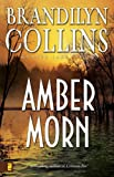 Front cover for the book Amber Morn by Brandilyn Collins