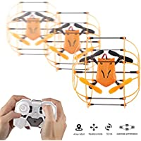Dazhong 2.4Ghz Mini RC Quadcopter Drone 4CH 6-Axis 3D Eversion Flying and Running RC Quadcopter with Ball Shaped Protector