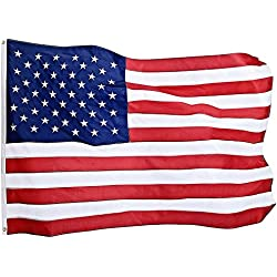 Jetlifee American Flag 3X5 Ft by U.S. Veterans Owned Biz. Heavyweight Nylon Embroidered Stars Sewn Stripes and Brass Grommets US Flag. All Weather Indoors Outdoors USA Flag 3 X 5 Foot