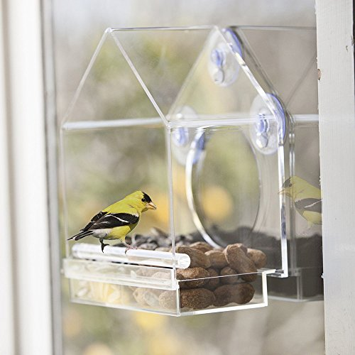 OnDisplay Window Mounted Clear Acrylic Bird House For Sale