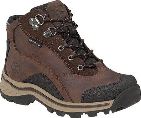 Timberland PATUCKAWAY HKR 66932 - Zapatillas de deporte de cuero para niños Marrón