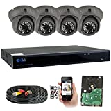 GW Security 8 Channel HD 4.0MP (2688TVL) Outdoor/ Indoor Security Camera System with 4 x 4MP HD 1520P CCTV Camera, Pre-Installed 2TB Hard Drive, High Resolution Long Transmit Range (Dome cameras)