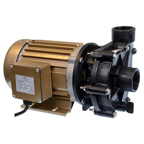 ReeFlo 11143 Utility Hammerhead/Barracuda Hybrid Pump by Reeflo