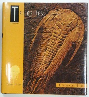 Trilobites