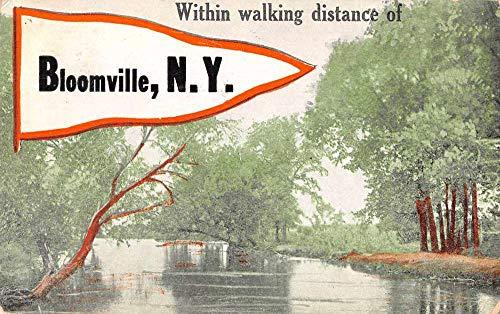 Bloomville New York Greetings Pennant Flag Scenic View Postcard JB626326