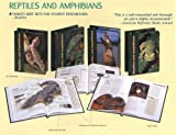 Reptiles and Amphibians, , 0761473904