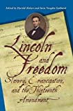 img - for Lincoln and Freedom: Slavery, Emancipation, and the Thirteenth Amendment book / textbook / text book
