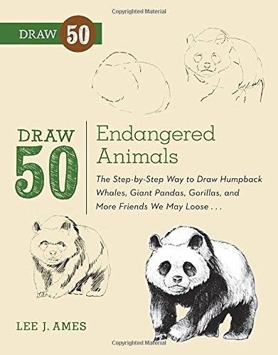how to draw a panda - 2