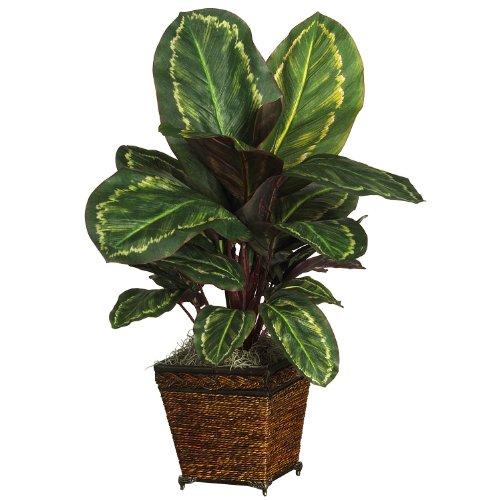 AWM Real Looking Maranta w/Basket Silk Plant Green Colors - Silk Plant
