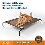 Coolaroo The Original Elevated Pet