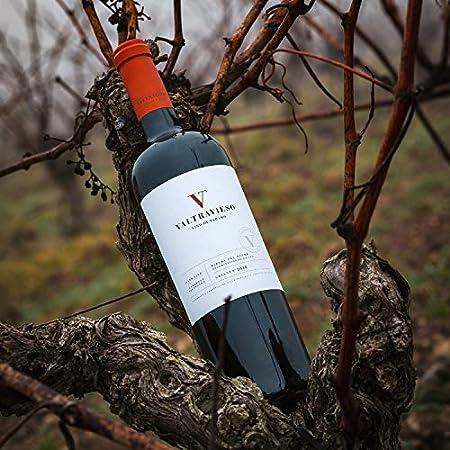 Lote Vino Tinto D.O. Ribera del Duero de Paramo Pack de 6 Botellas - Valtravieso Crianza Tinto Fino 99% y Cabernet Sauvignon 1%