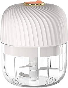 iClosam Electric Garlic Chopper 250ML Wireless Mini Grinder Portable Chopper Small Blender for Food/Garlic/Ginger/Onion/Chili/Pumpkin/Veggies,Food Processor
