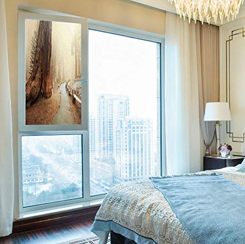 YOLIYANA Frosted Window Film,Americana Landscape Decor,for Shop Restaurant Home,Forest with Giant Tree Body in The Foggy,24''x48''