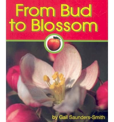 Red Bud Blossom - From Bud to Blossom (Apples)
