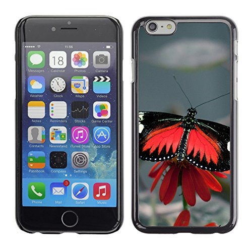 Premio Sottile Slim Cassa Custodia Case Cover Shell // V00002977 papillon noir // Apple iPhone 6 6S 6G 4.7""