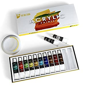 Art Owl Studio Acrylic Paint Set, Nontoxic & Odor-Free 12x12ml Quality Painting Supplies for Artists with Free Brush Washer