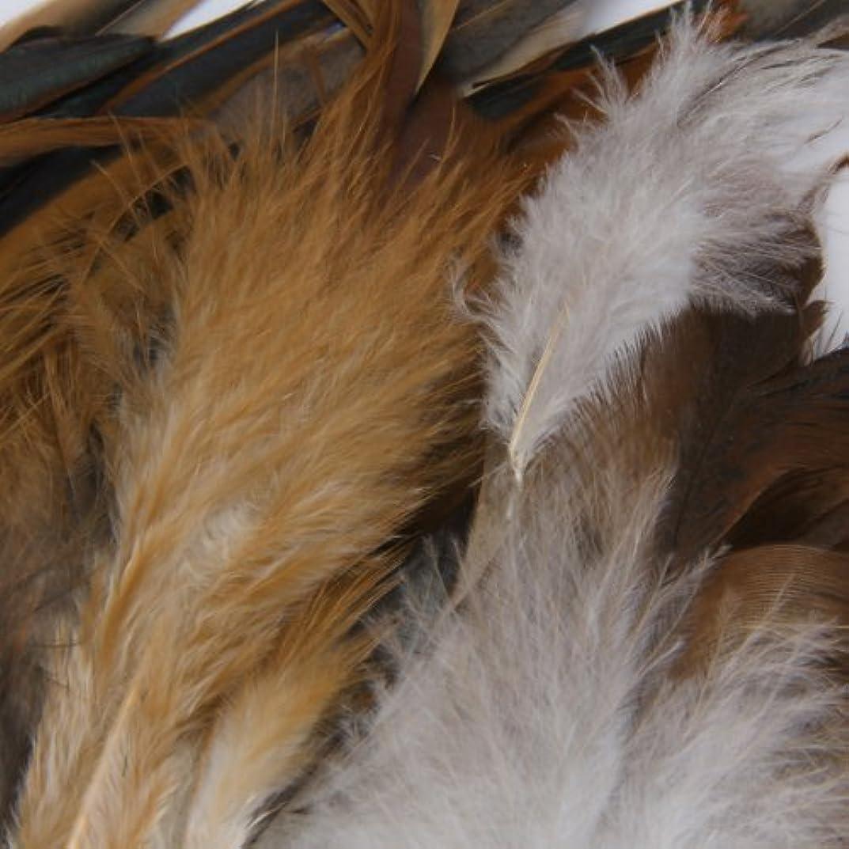 ウミウシ悩むステージSODIAL(R)20個グリーンレディアマーストブロンズキジ羽羽インチ長さ1.5~3インチ
