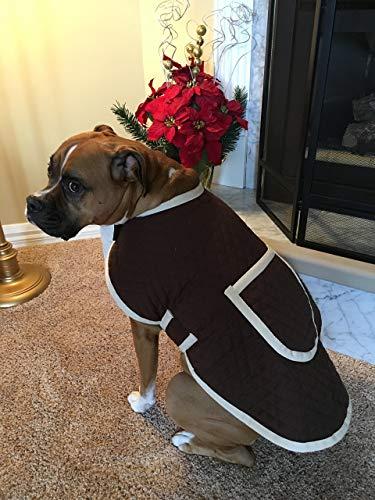 Dog Jacket (many colors available)